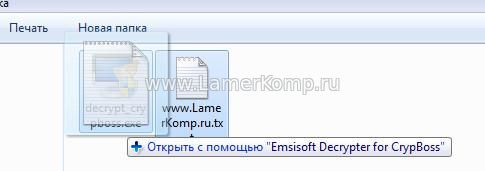 Emsisoft Decrypter for CrypBoss